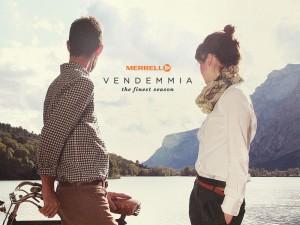 vendemmia_blog